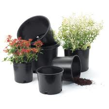 Thermoformed Pots ?>