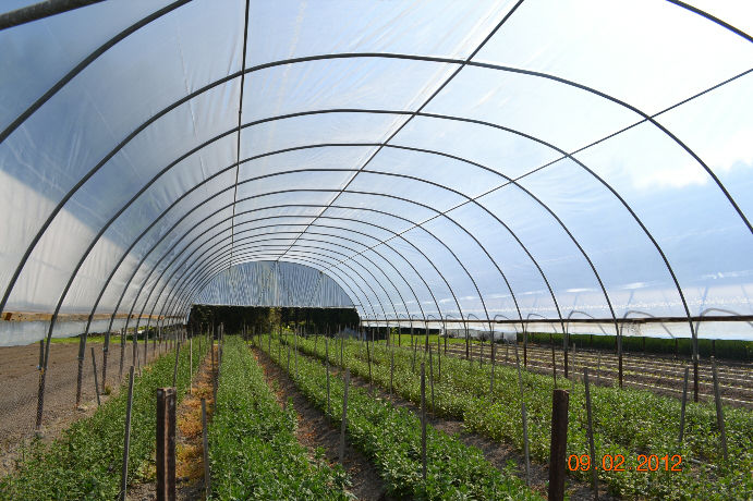 Quonset Structures American Horticultural Supply
