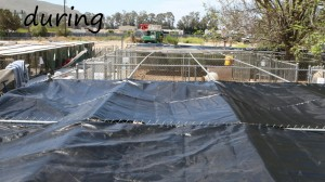 EagleProject MainDuring
